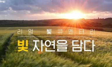 서울반도체 썬라이크 소개 동영상